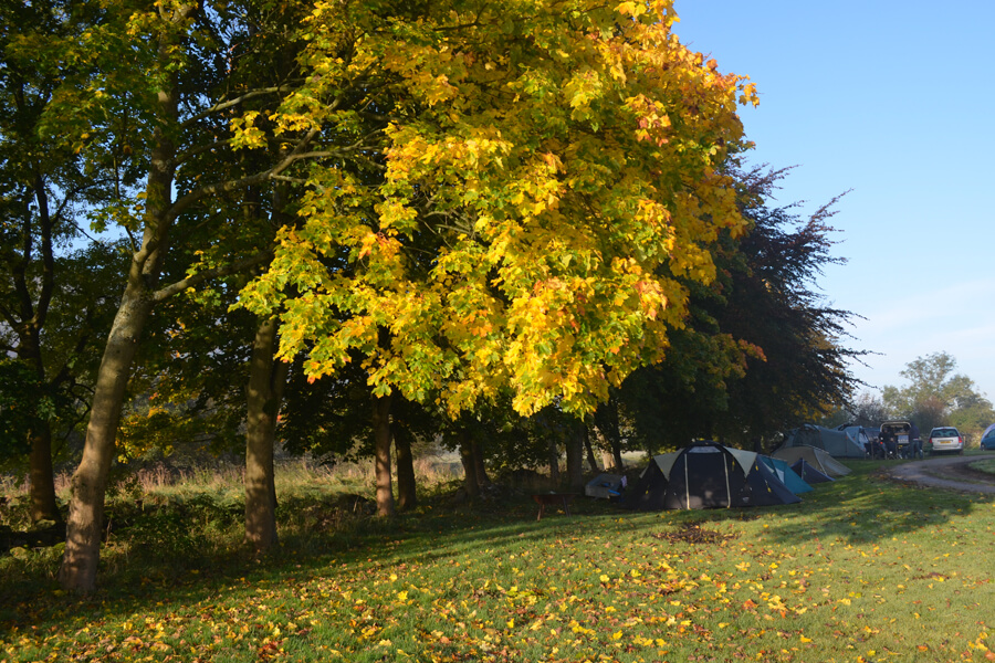 Masons Campsite Main Field Autumn
