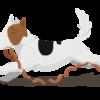 Dog Sauasages 2