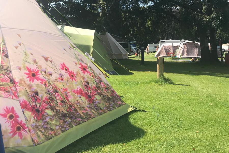 Masons Campsite Flower tent