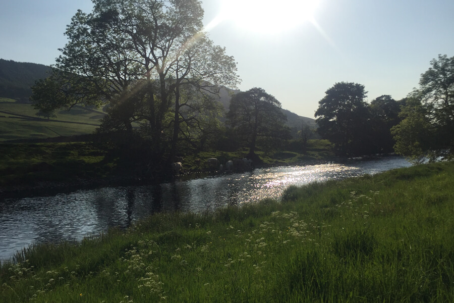 Camping Bolton Abbey River