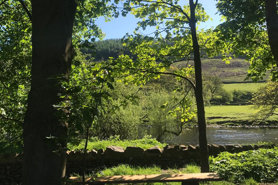 Masons Campsite Bolton Abbey River