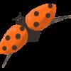 Masons Ladybird
